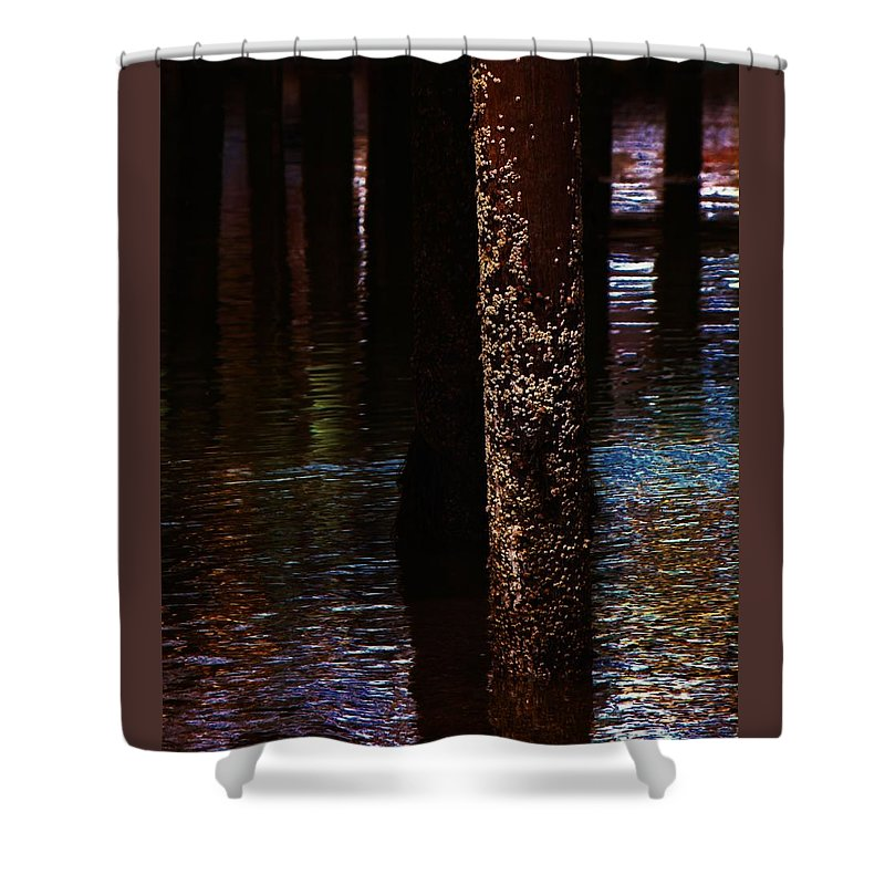 Dock Shower Curtain featuring the photograph Snails by John Feiser