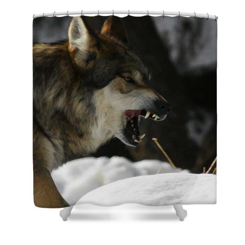 Wolf Shower Curtain featuring the photograph Snarling Wolf by Ernie Echols