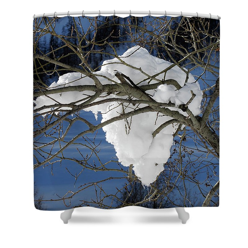 Snow Shower Curtain featuring the photograph Snow And Africa by Stefania Levi