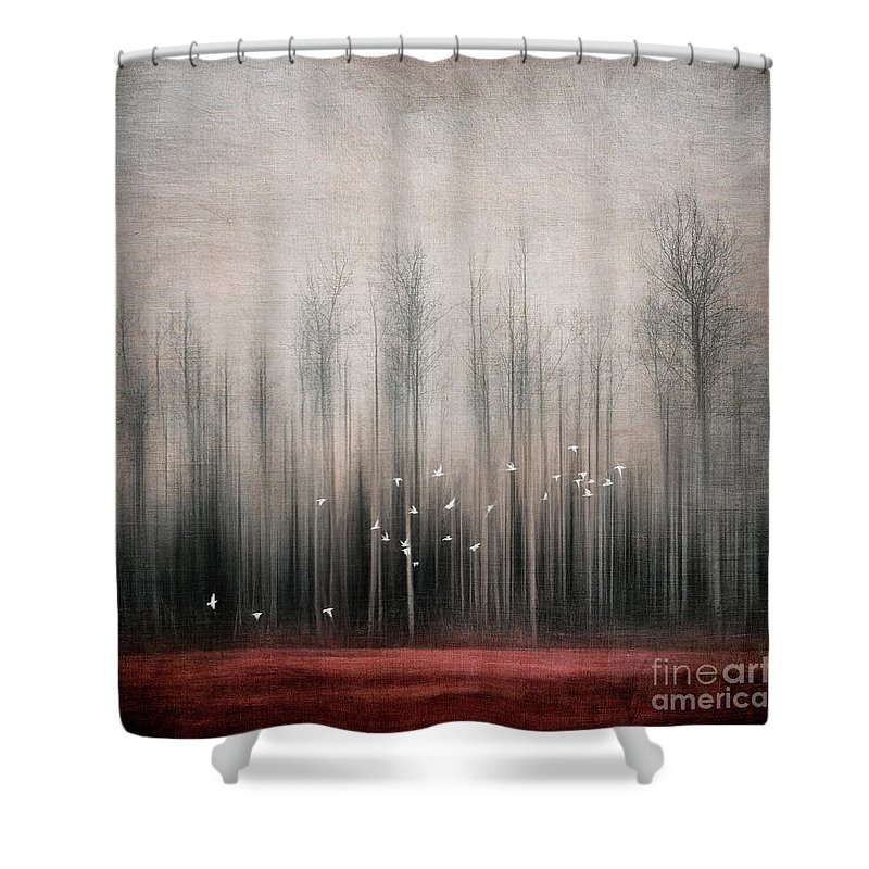 Snow Bunting Shower Curtain featuring the photograph Snow Birds by Priska Wettstein