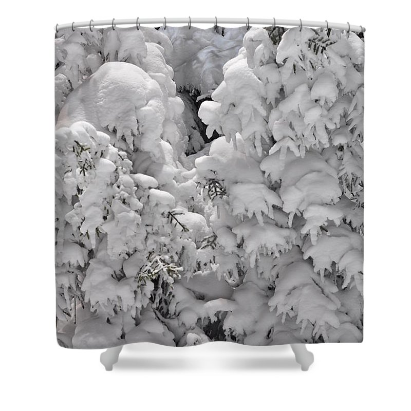 Snow Shower Curtain featuring the photograph Snow Coat by Alex Grichenko