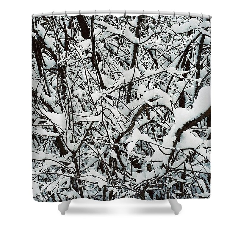 Abstract Shower Curtain featuring the photograph Snow On Branches by Ric Bascobert