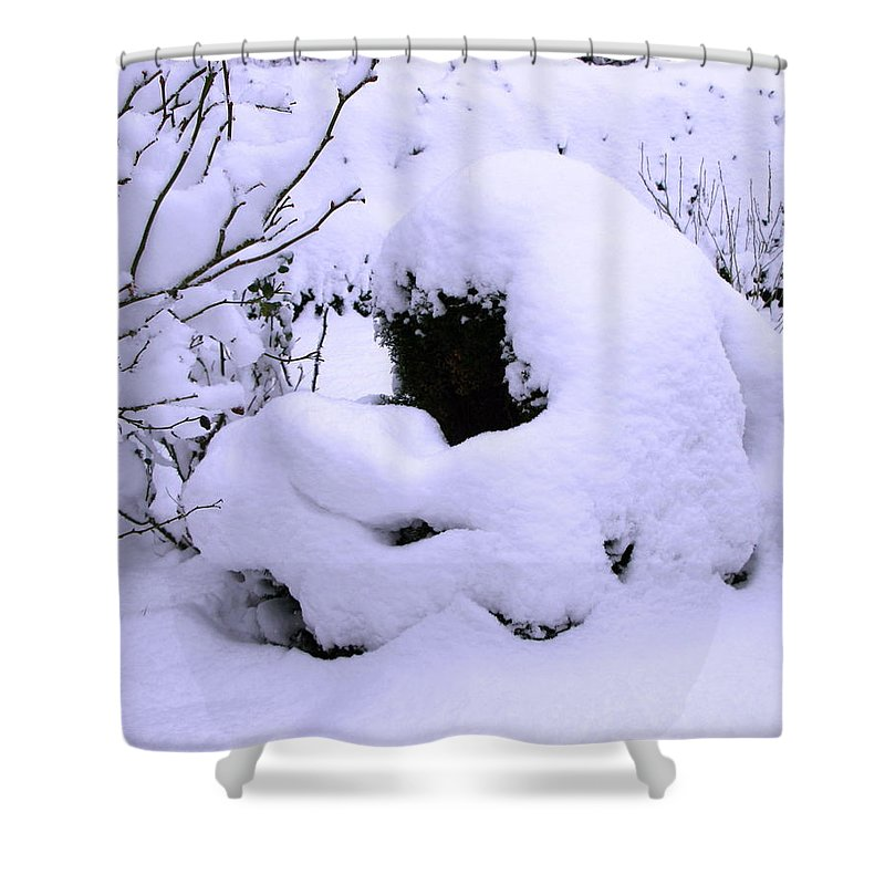 Snow Shower Curtain featuring the photograph Snowbush by Maria Joy