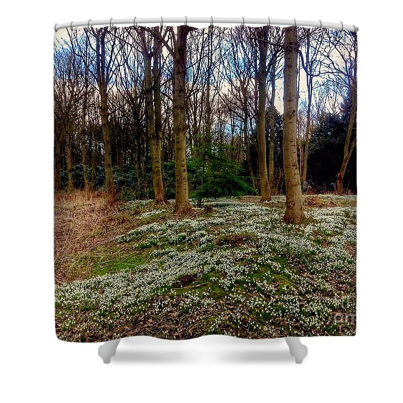 Snowdrops Shower Curtain featuring the photograph Snowdrop Woods 2 by Joan-Violet Stretch