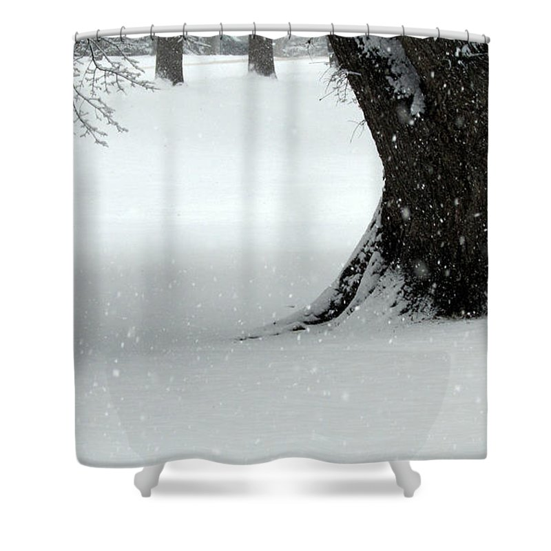 Trees Shower Curtain featuring the photograph Snowflakes by Joni Moseng