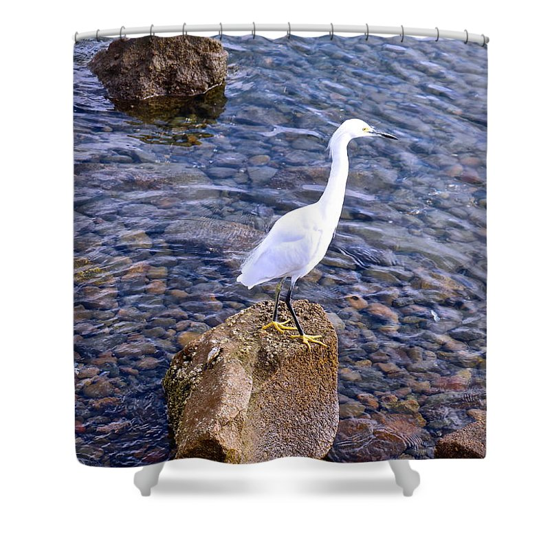 White Shower Curtain featuring the photograph Snowy Egret by Joy Buckels