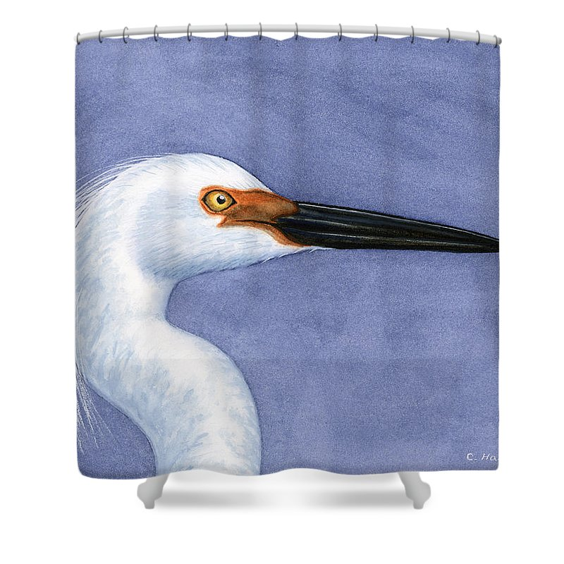 Snowy Shower Curtain featuring the painting Snowy Egret Portrait by Charles Harden