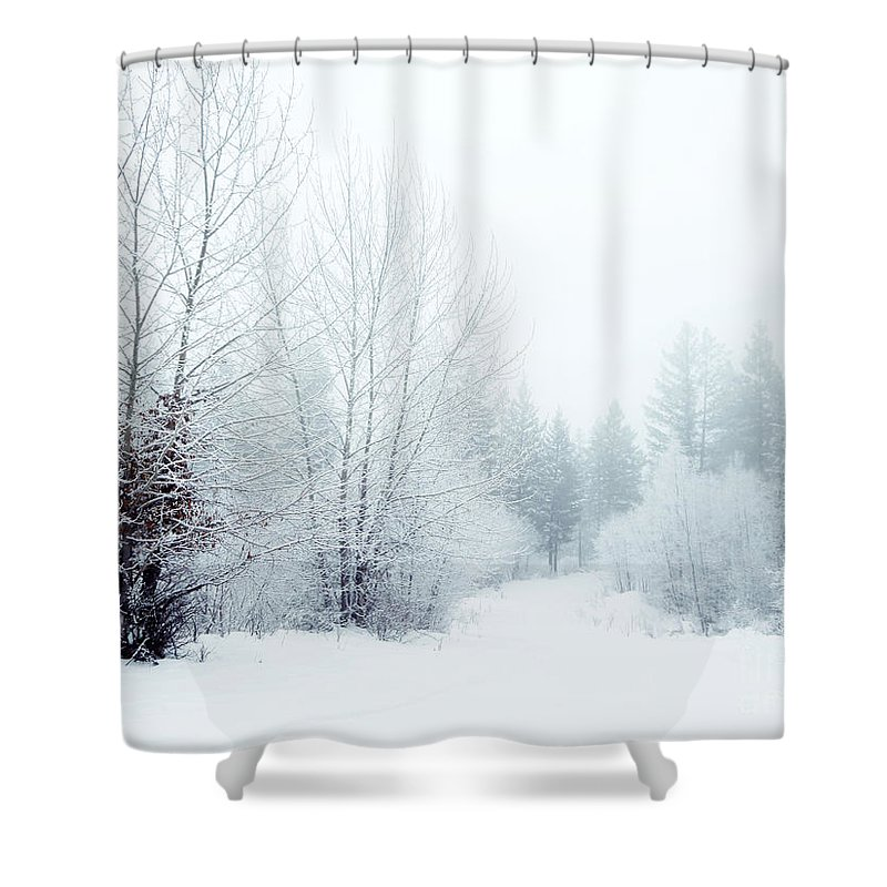 Snow Shower Curtain featuring the photograph Snowy Sunday by Tara Turner