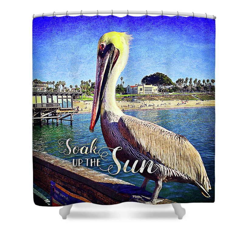Color Shower Curtain featuring the photograph Soak Up The Sun Quote, Cute California Beach Pier Pelican by Marcia Luce at Luceworks