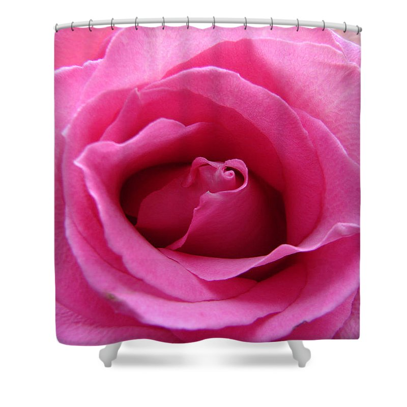Rose Pink Pedals Shower Curtain featuring the photograph Soft And Pink by Luciana Seymour