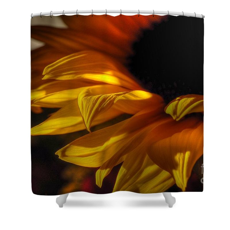 Chris Fleming Shower Curtain featuring the photograph Soft Flame by Chris Fleming