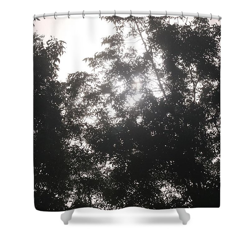 Light Shower Curtain featuring the photograph Soft Light by Nadine Rippelmeyer