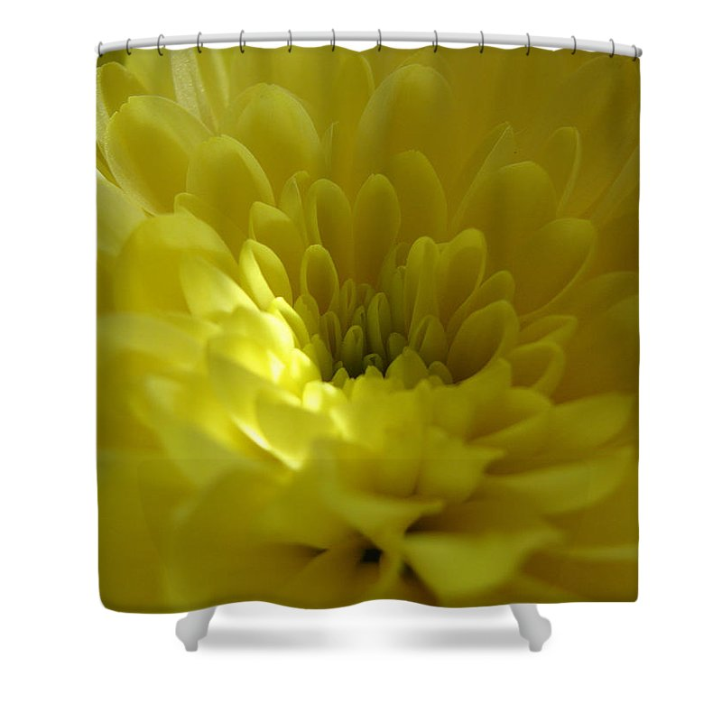Shower Curtain featuring the photograph Soft by Luciana Seymour
