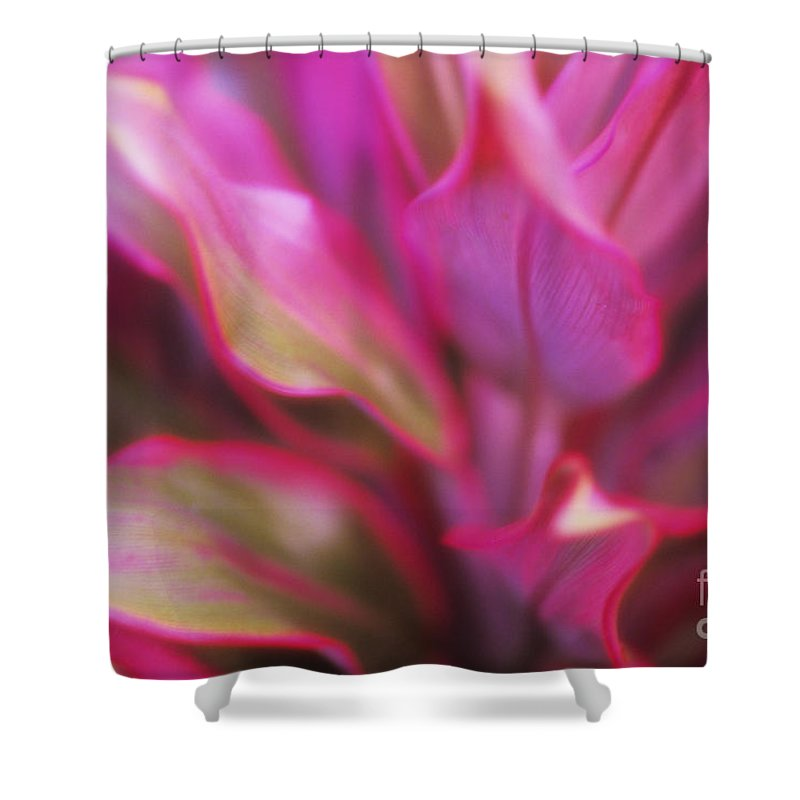 Abstract Shower Curtain featuring the photograph Soft Red Ti by Ron Dahlquist - Printscapes