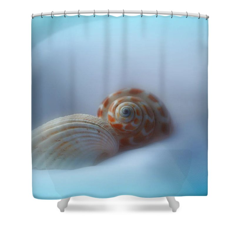 Nature Shower Curtain featuring the photograph Soft Shells by Linda Sannuti