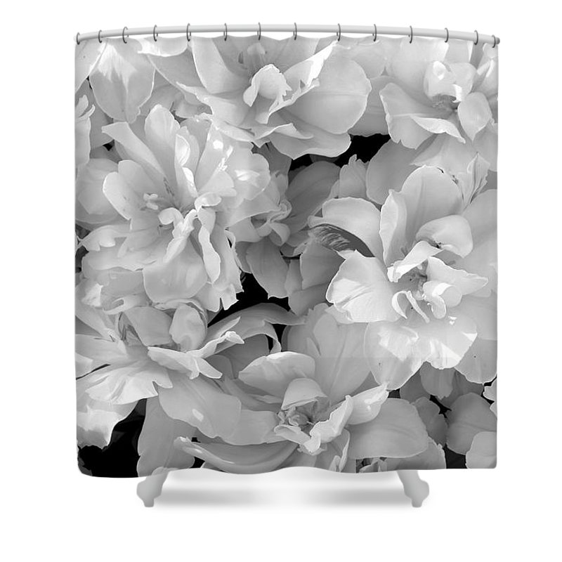 Tulips Shower Curtain featuring the photograph Soft Whites by Deborah Crew-Johnson