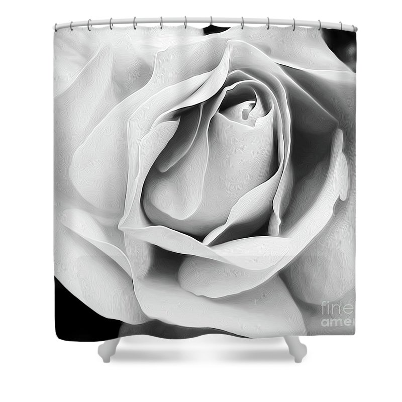 Photography Shower Curtain featuring the photograph Softness Unfolding by Kaye Menner