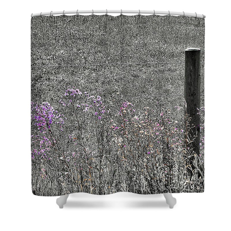 Solitary Shower Curtain featuring the photograph Solitary by Susan Kinney