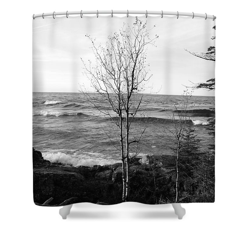 Pure Shower Curtain featuring the photograph Solo Young Tree by Two Bridges North
