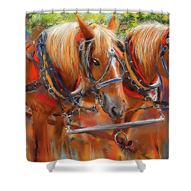 Solvang California Shower Curtains