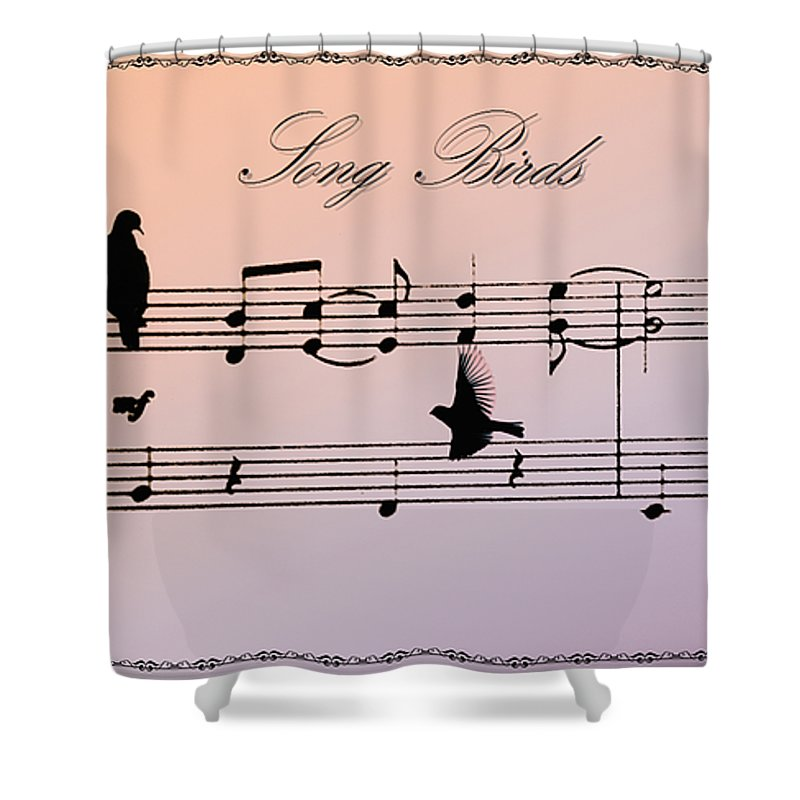 Bird Shower Curtain featuring the photograph Songbirds With Border by Bill Cannon