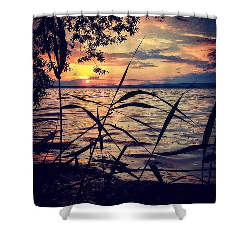 Silhouette Shower Curtains