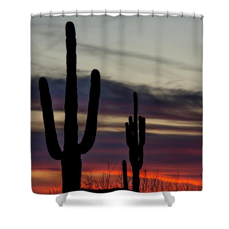 Sky Shower Curtain featuring the photograph Sonoran Desert Sunset by Susan Westervelt