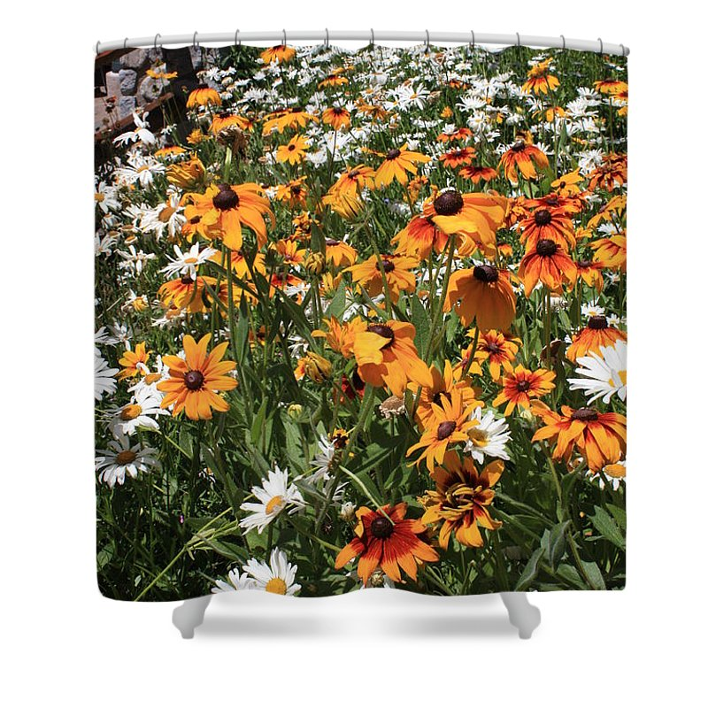 Flowers Shower Curtain featuring the photograph South Lake Tahoe Flowers by Carol Groenen