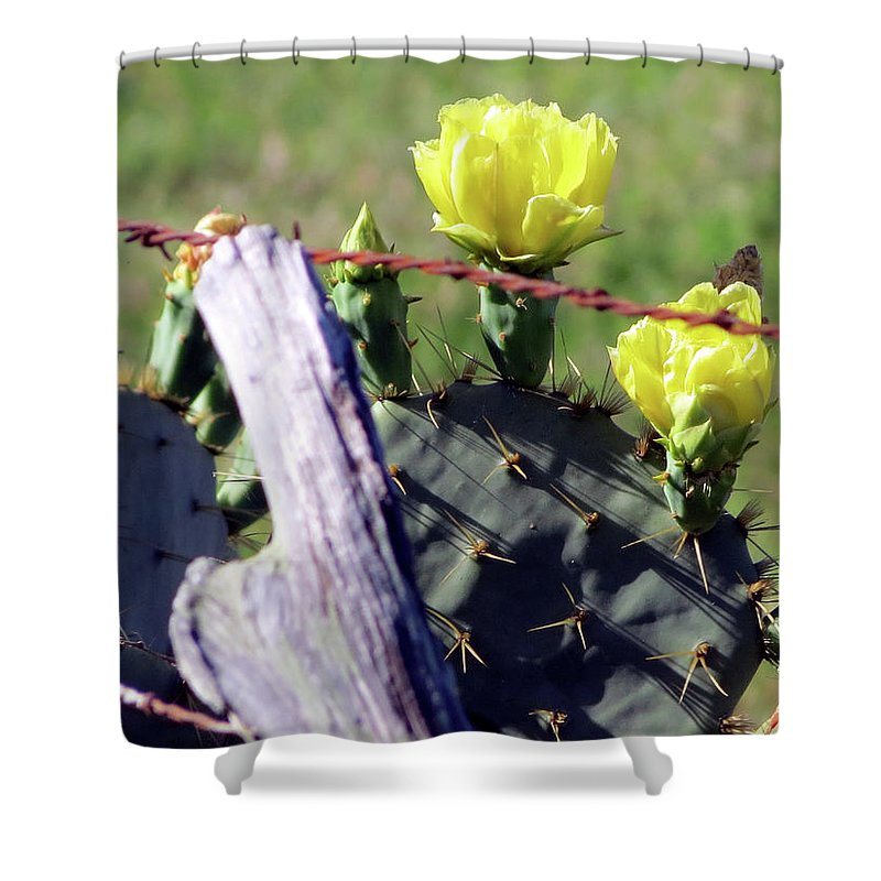 Cactus Shower Curtain featuring the photograph South Texas Fence by Larry Linley