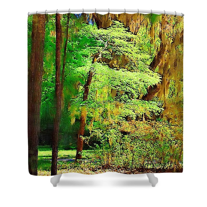Woods Shower Curtain featuring the photograph Southern Forest by Donna Bentley