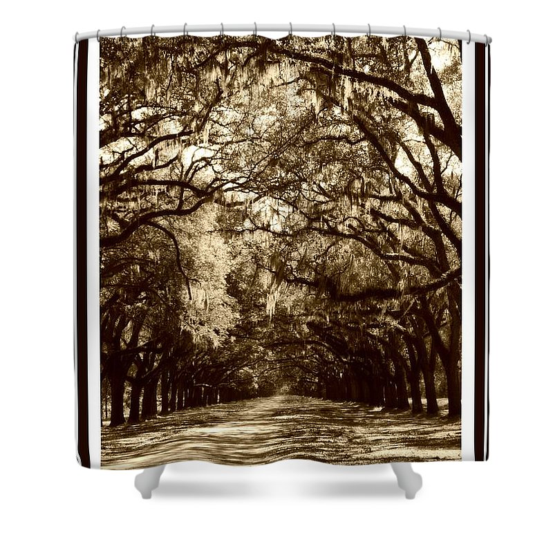 Brown Shower Curtain featuring the photograph Southern Welcome In Sepia by Carol Groenen