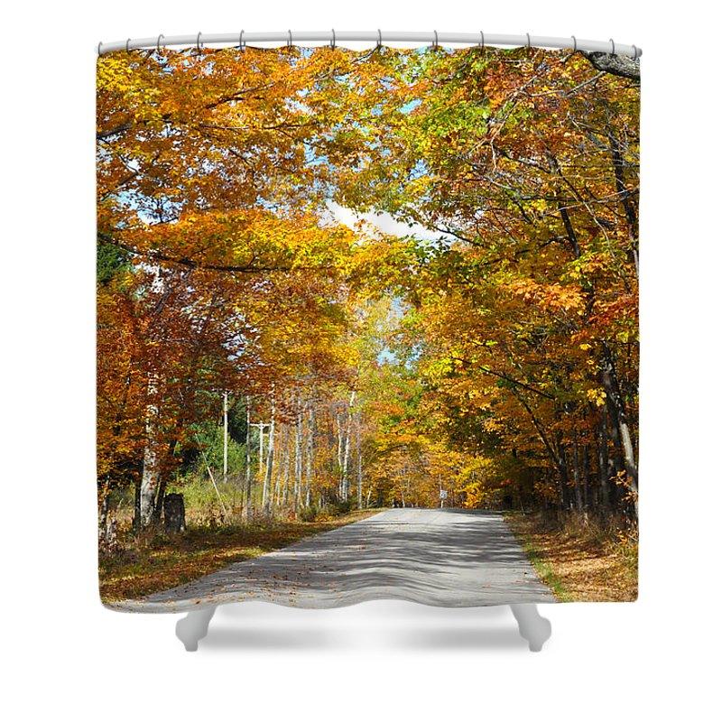 Fall Shower Curtain featuring the photograph Speed Limit 25 Mph by Tim Nyberg