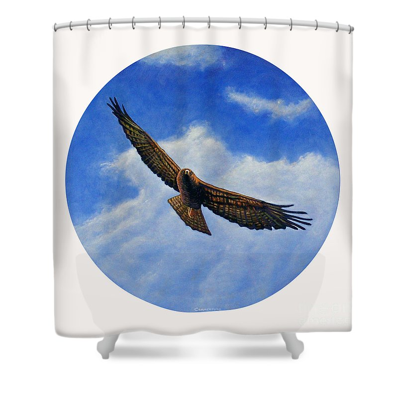 Hawk Shower Curtain featuring the painting Spirit In The Wind by Brian Commerford