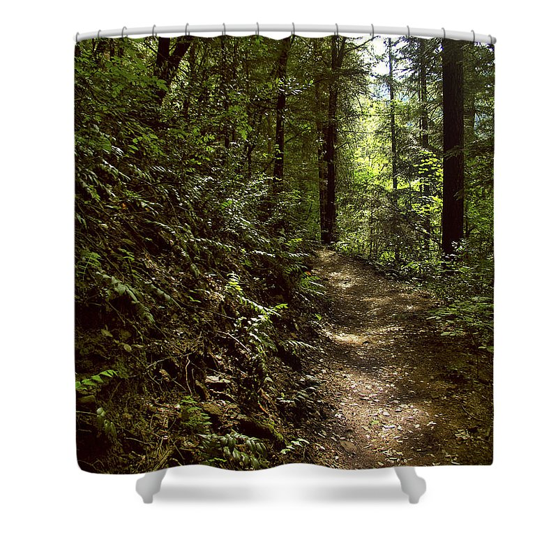 Landscape Shower Curtain featuring the photograph Spirit Of The Wood by Karen W Meyer