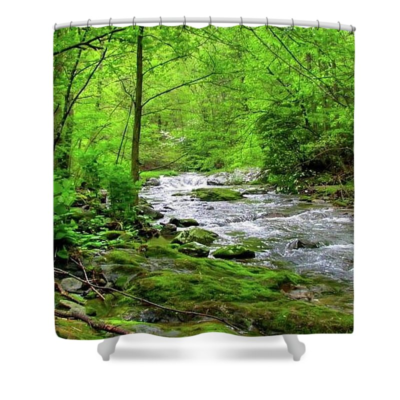 Nature Creek Spring Green Moss Water Relaxing Peaceful Shower Curtain featuring the photograph Spivey Creek by Judy Baird