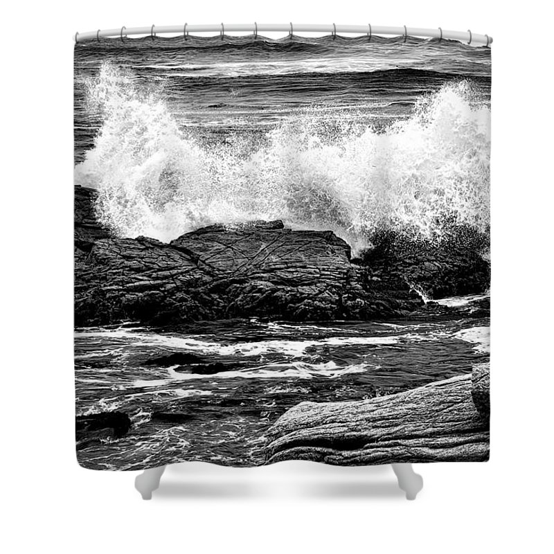 Action Shower Curtain featuring the photograph Splash by Maria Coulson