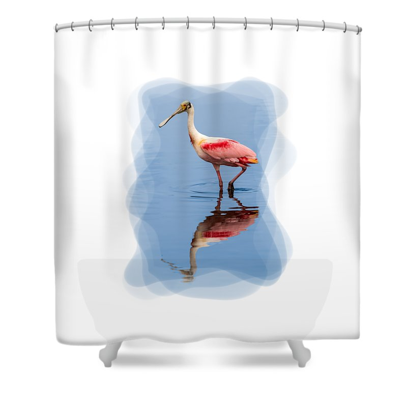 Animals Shower Curtain featuring the photograph Spoonbill 3 by John M Bailey