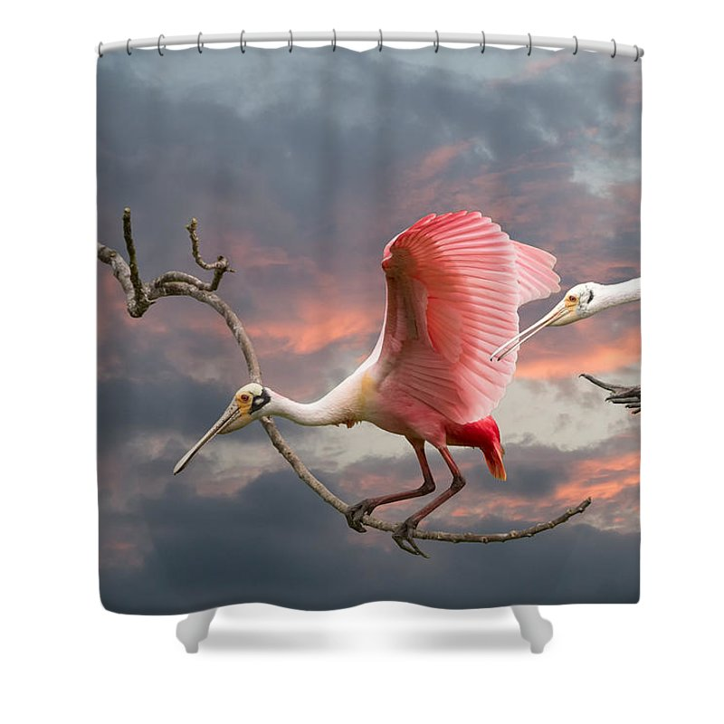 Roseate Spoonbill Shower Curtain featuring the photograph Spoonbill Fantasy #2 by Linda Murdock