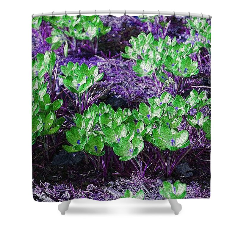 Spring Crocus Shower Curtain featuring the painting Spring 1 by LDS Dya
