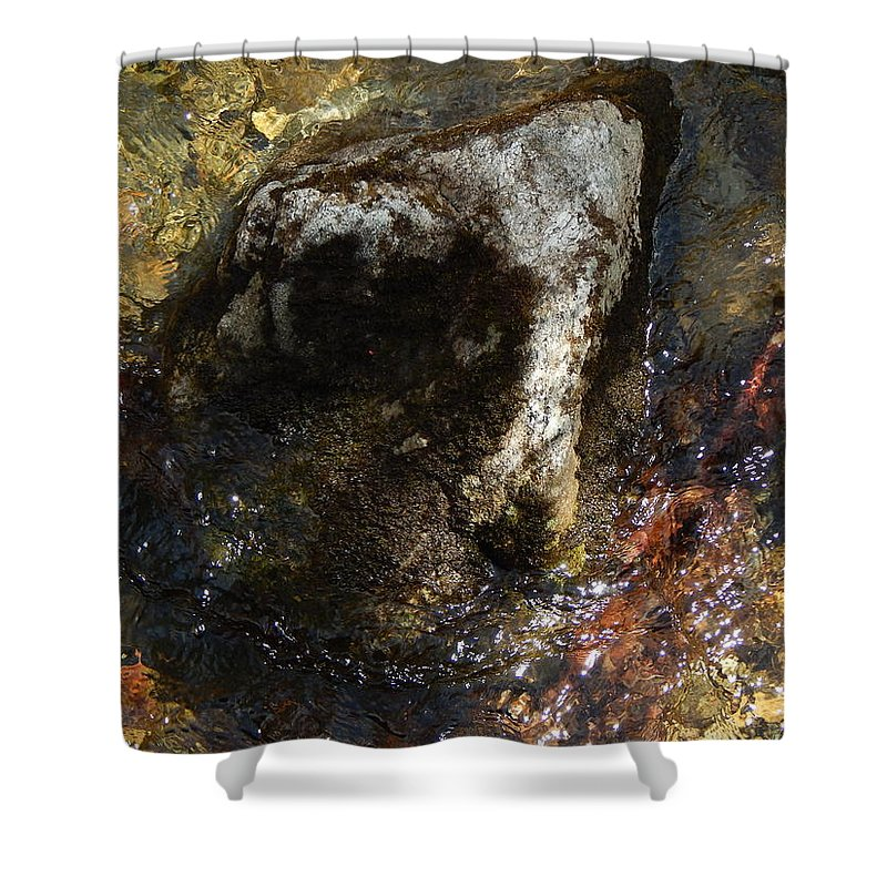 Color Close-up Landscape Shower Curtain featuring the photograph Spring 2017 168 by George Ramos