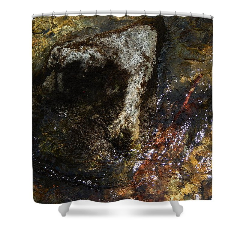 Color Close-up Landscape Shower Curtain featuring the photograph Spring 2017 169 by George Ramos
