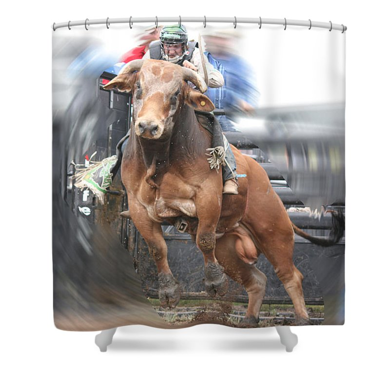 Cowboy Bull Riding Cow Rodeo Falling Entertainment Shower Curtain featuring the photograph Spring Ahead by Andrea Lawrence