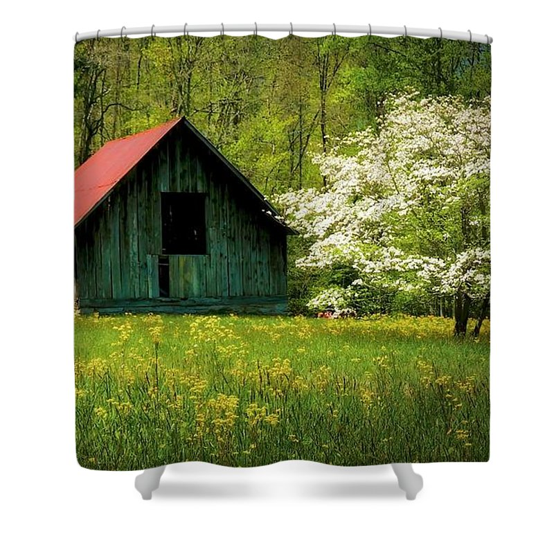 Blue Ridge Mountains Shower Curtain featuring the photograph Spring and the Barn by Zayne Diamond Photographic