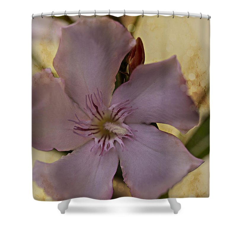 Flower Shower Curtain featuring the photograph Spring by Annette Berglund
