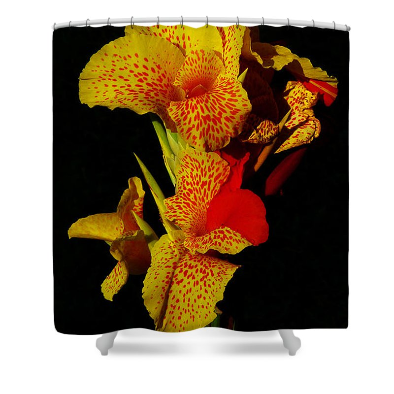 Tropicana Shower Curtain featuring the photograph Spring Blossom 7 by Xueling Zou