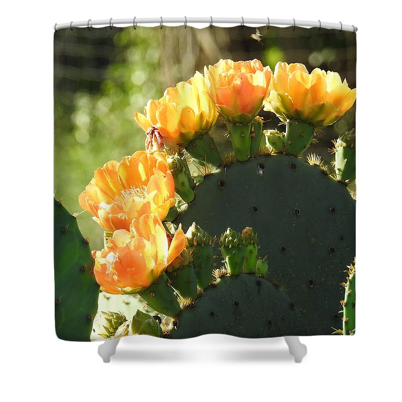 Texas Shower Curtain featuring the photograph Spring Cactus 14 by Karen Mangold