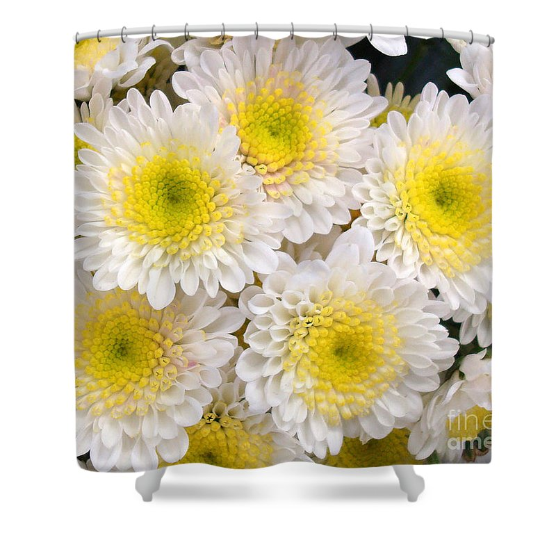 Floral Shower Curtain featuring the photograph Spring Fever by Kathy Bucari