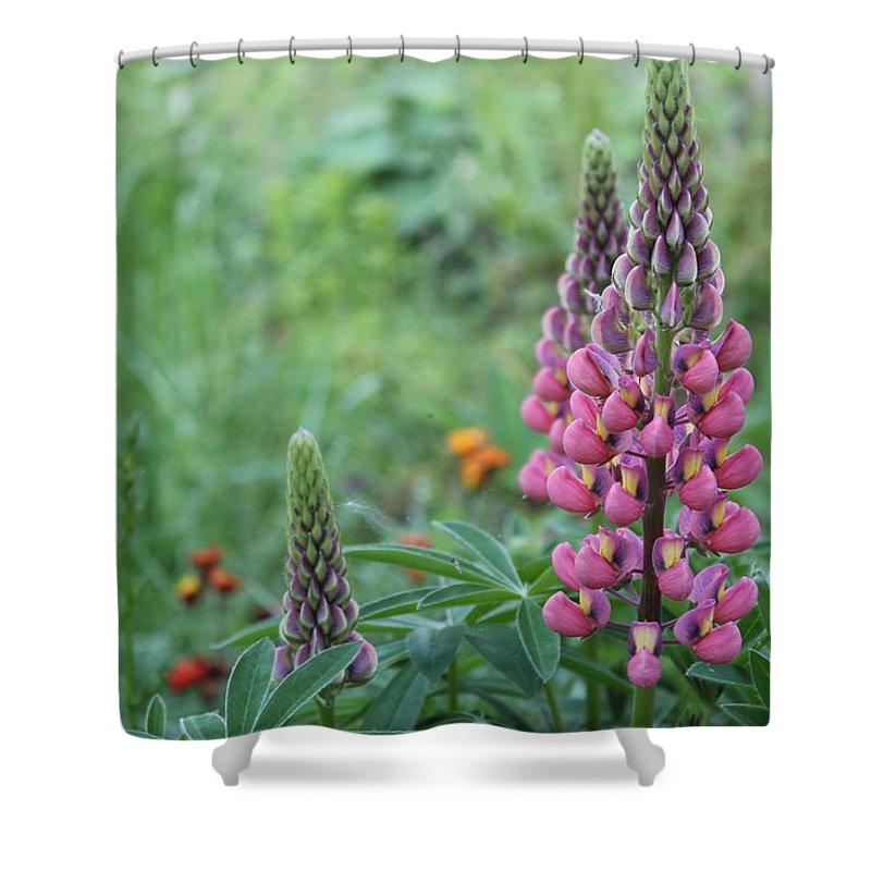 Flower Garden Landscape Shower Curtain featuring the photograph Spring Flowers by Michaela Hughes