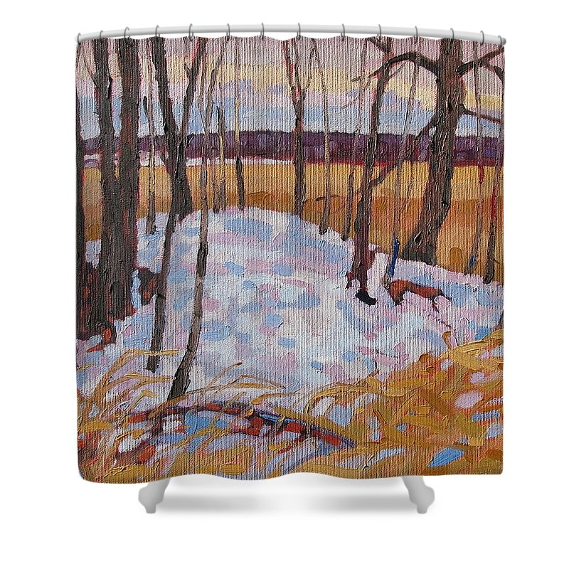 Bromme-runciman Shower Curtain featuring the painting Spring Island by Phil Chadwick