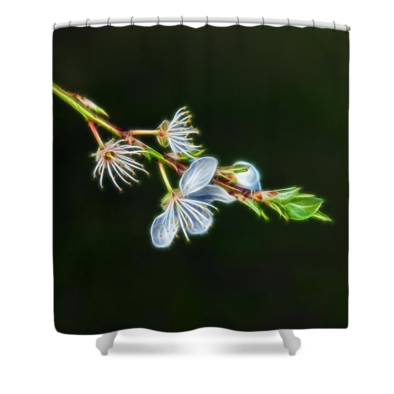 Nature Shower Curtain featuring the photograph Spring by Lee Houston